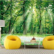 Sử dụng giấy dán tường, mang cả thiên nhiên vào nhà bạn! anh tuong dep 1