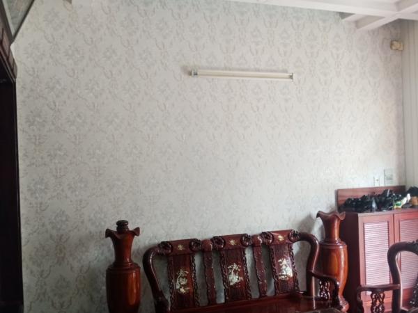 giấy dán tường phòng khách alisha3905-1 ALISHA3905 1 1