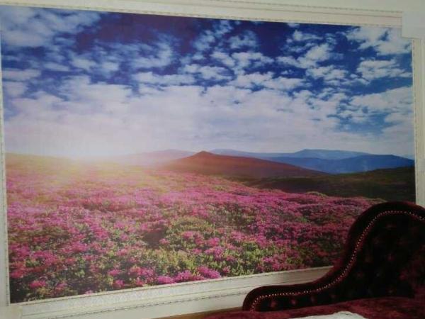 Bình minh sườn đồi đầy hoa cỏ fc1b018263d98387dac8